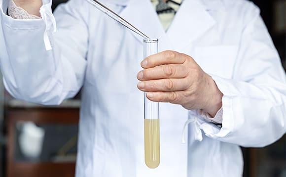 写真:試験管実験の様子